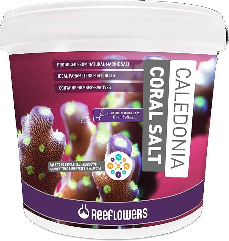 7) Cobalt ReeFlowers Caledonia Reef Salt