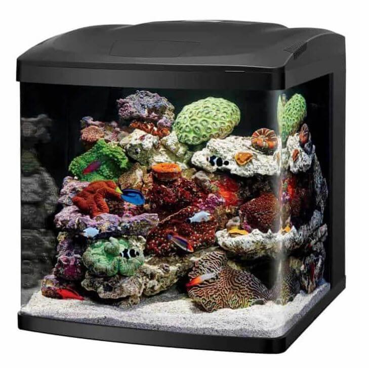 1) Coralife Micro Reef Tanks