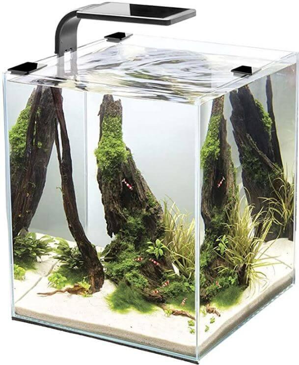 2) Cobalt Aquatics Small Reef Tank
