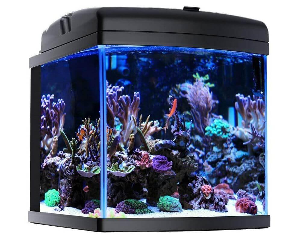 5) JBJ Nano Reef Tank
