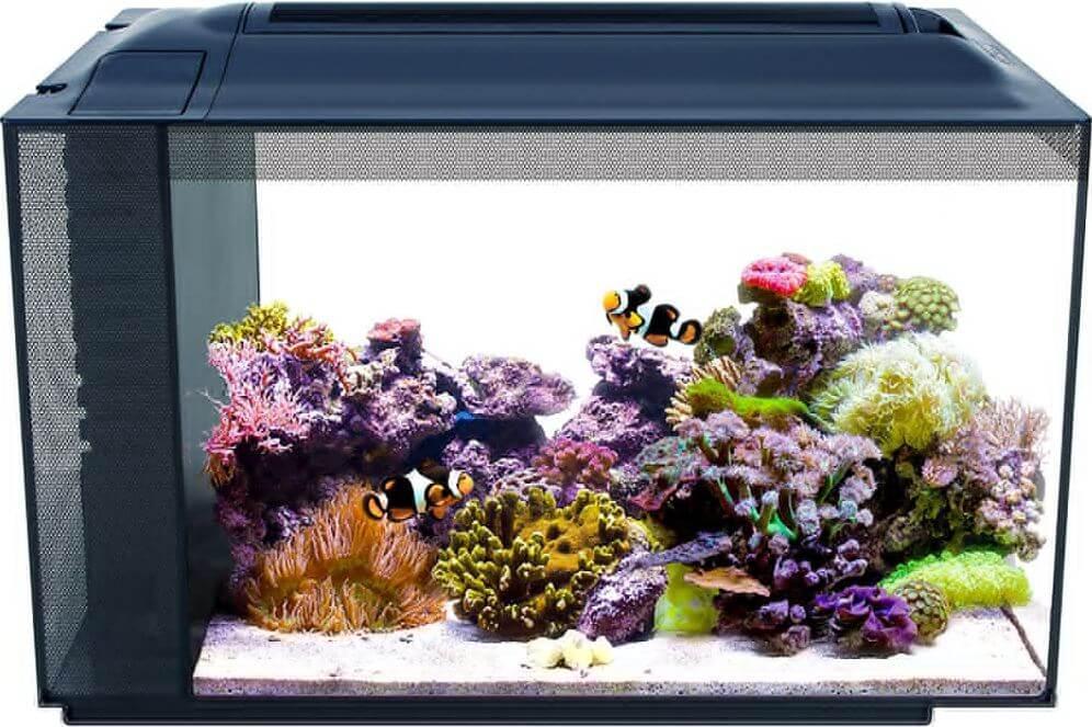 7) Fluval 13.5 Gallons Nano Reef Tank